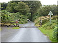 SX1074 : Cattle grid on the edge of Pendrift Downs by Rod Allday