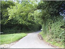 SU8499 : Spring Coppice Lane, Speen by David Howard