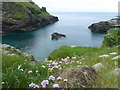 SX0589 : Cliff top above Tintagel Haven by Rod Allday