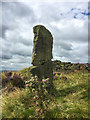 SK2781 : Ancient milestone on the Houndkirk Road by Graham Hogg
