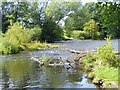 NZ2314 : River Tees near Merrybent by Oliver Dixon