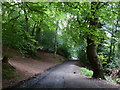 SJ6308 : Track to the car park at the Wrekin by Mat Fascione