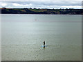 SX0852 : Paddle-boarders do it standing up! by John Lucas