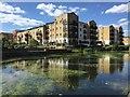 TQ3681 : Residential Flats by Alan Hughes
