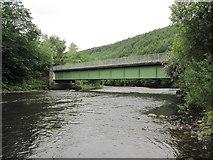 SN8001 : Ynysbwllog Aqueduct crossing the River Neath by David Tyers