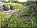 SE2641 : Recreated railway track, Golden Acre Park by Stephen Craven