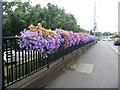 J4187 : Carrickfergus flowers [2] by Michael Dibb