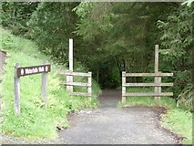 D2120 : Waterfalls walk [1] by Michael Dibb