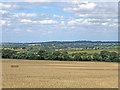 TL5854 : Towards Six Mile Bottom by John Sutton