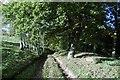 SO7059 : Track beneath Thrift Farm by Richard Webb