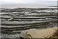 ST1344 : Sea shore near Quantock's Head by Bill Boaden