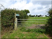 SS9707 : Start of a footpath to Butterleigh by David Smith