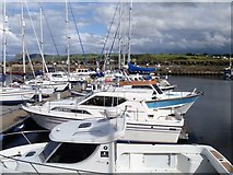D1241 : Ballycastle marina by Michael Dibb