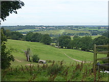 TQ5193 : The Essex countryside from the London LOOP by Marathon