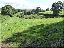 SS8711 : Stream valley east of South Linhay, Cruwys Morchard by David Smith