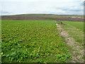 SE0906 : Upland arable farming, Upperthong by Humphrey Bolton