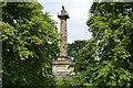 NU1913 : The Tenantry Column, Alnwick by David Martin