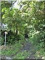 SN0717 : Bridleway near Llawhaden by PAUL FARMER