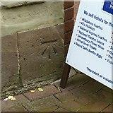 SJ9223 : Bench mark, Borough Hall, Stafford by Alan Murray-Rust