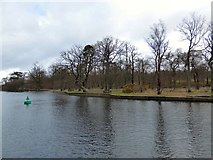 NS3882 : Balloch Country Park by Gerald England