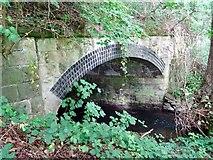 SK2947 : Ecclesbourne culvert under Wirksworth Road by Ian Calderwood