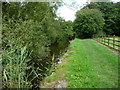 SK4554 : Public footpath along the Pinxton Arm towpath by Christine Johnstone