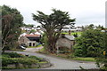 SH8076 : A cedar tree in Glan Conwy by Richard Hoare