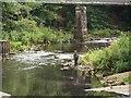 NZ1885 : The River Wansbeck at Highford Bridge by Graham Robson