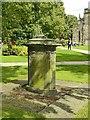SJ9223 : St Mary's Churchyard, Stafford by Alan Murray-Rust