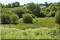 SX7168 : Holy Brook valley by Derek Harper