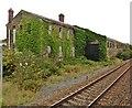 SS5099 : Former railway goods depot, Llanelli by Roger Cornfoot