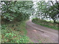 NU0027 : Country Lane towards Coldmartin Loughs by Les Hull