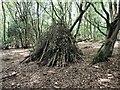 TQ7819 : Children's wigwam style den in Killingan Wood by Patrick Roper