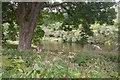 NN8750 : River Tay by Richard Webb