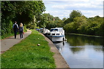 TQ1579 : Grand Union Canal just below the confluence with the River Brent by David Martin