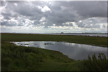 NU1341 : Flooded field at Castle Point on Holy Island by Robert Eva