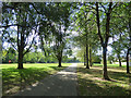 TA1131 : East Park - lakeside path with trees by Stephen Craven