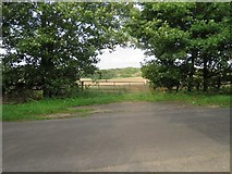 SU5846 : Field gate off Up Street by Given Up