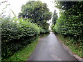 ST0780 : Green part of Peterston Road, Groesfaen by Jaggery