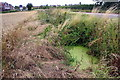 SK2105 : Ditch and culvert beside Ashby Road (B5493) by Roger Templeman