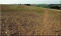 ST6702 : Path across Giant Hill by Derek Harper