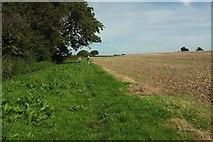 ST6702 : Path near Giant's Head Farmhouse by Derek Harper