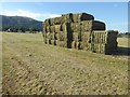 SO7844 : Hay bales on Malvern Common by Philip Halling