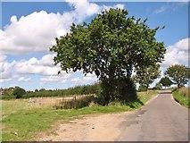 TM3795 : Gate into fields beside Wash Lane by Evelyn Simak
