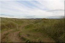 NT4681 : Path, Aberlady Bay by Richard Webb