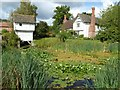 SO6855 : Lower Brockhampton by Philip Halling
