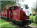 TG3406 : Strumpshaw Hall's narrow gauge railway by Evelyn Simak