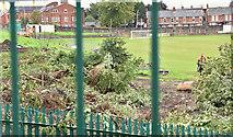 J3774 : Wilgar Park football ground, Belfast (September 2017) by Albert Bridge