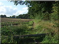 TL8362 : Track beside woodland off Horringer Road (A143) by JThomas