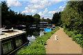 TQ3686 : Towpath beside the River Lea Navigation by Chris Heaton